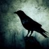 What is a Auroch - last post by WinterRaven