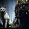 Bran Snow