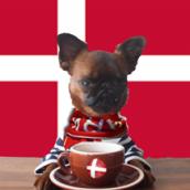 Eriksen's New Mascot