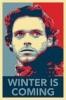 Robb Stark KitN